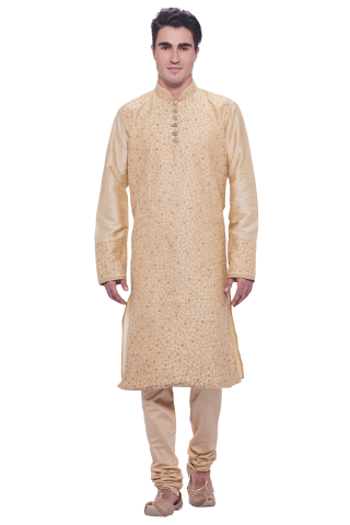 Indian ethnic wear - Kurta